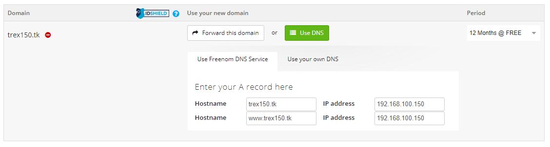 freenom DNS