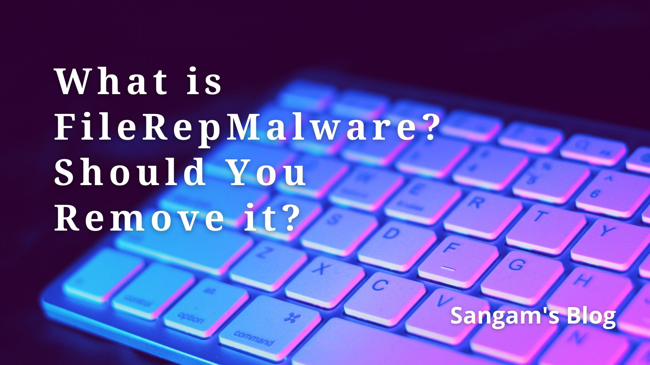 Read more about the article What is FileRepMalware and Should You Remove it